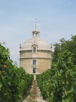 chateau and vineyard